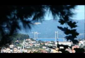 Un Mar de Vida | Turismo Urbano en Vigo